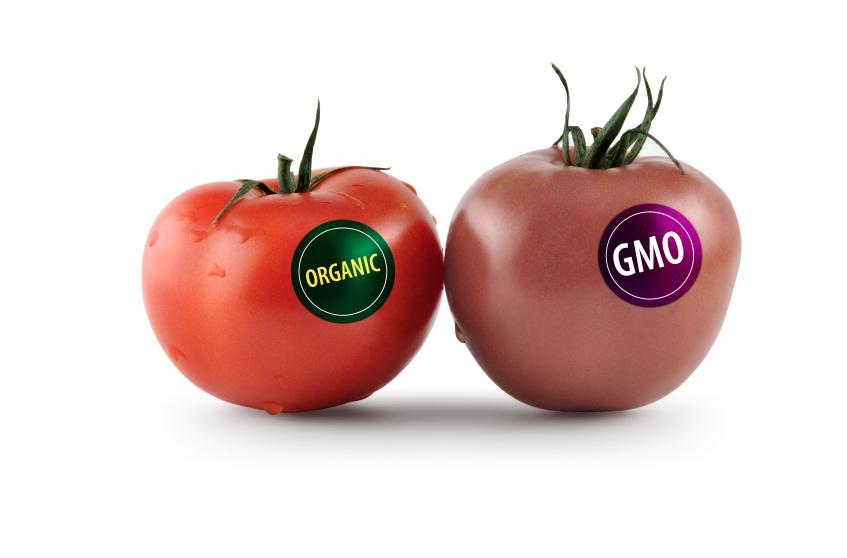 GMO Food List to Avoid (Monsanto Companies) & The Dangers of GMO Food