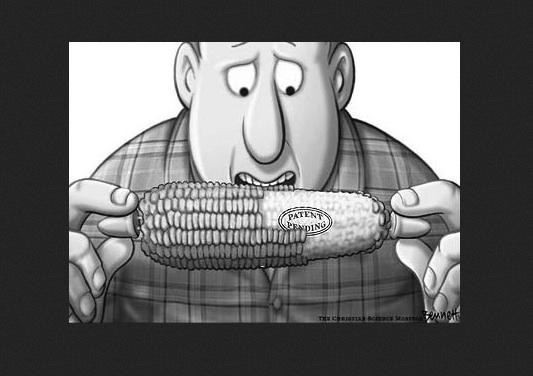 GMO_Patent